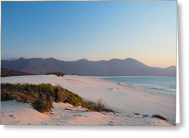 Isla De Espiritu Santo, Baja, Mexico Greeting Card by Mark Williford