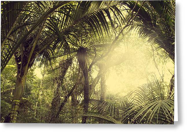 Fresh Green Greeting Cards - Tropical forest Greeting Card by Les Cunliffe