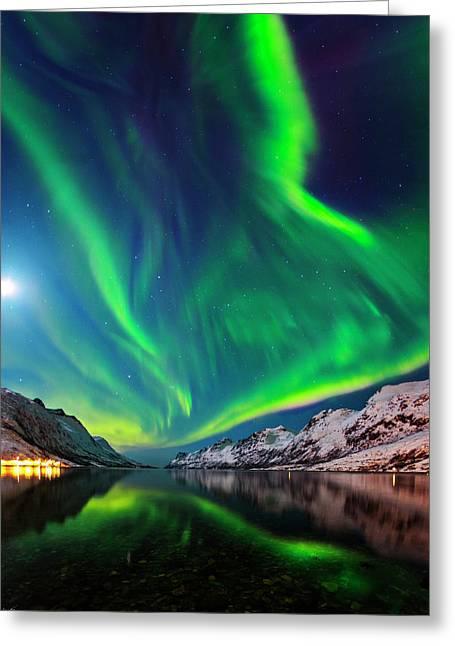 Aurora Borealis Greeting Card by Babak Tafreshi