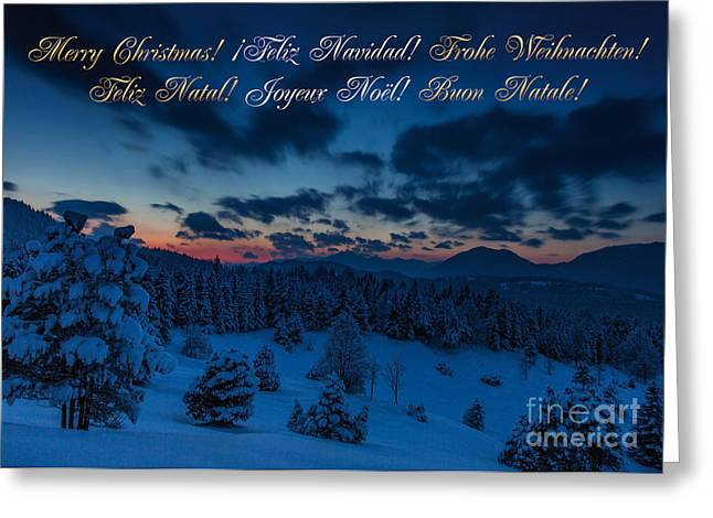 Frohe Greeting Cards - Christmas Card Greeting Card by Fabian Roessler