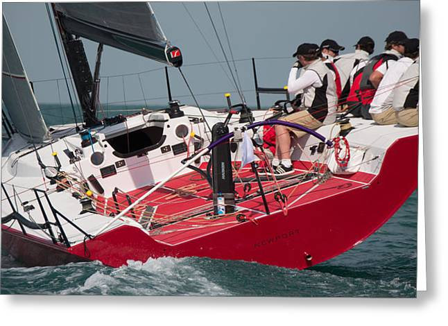Habor Greeting Cards - Key West Race Week Greeting Card by Steven Lapkin