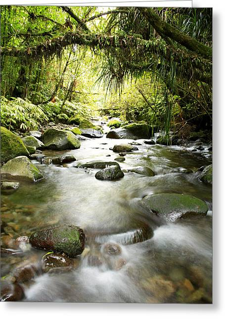 Beautiful Creek Greeting Cards - New Zealand  Greeting Card by Les Cunliffe