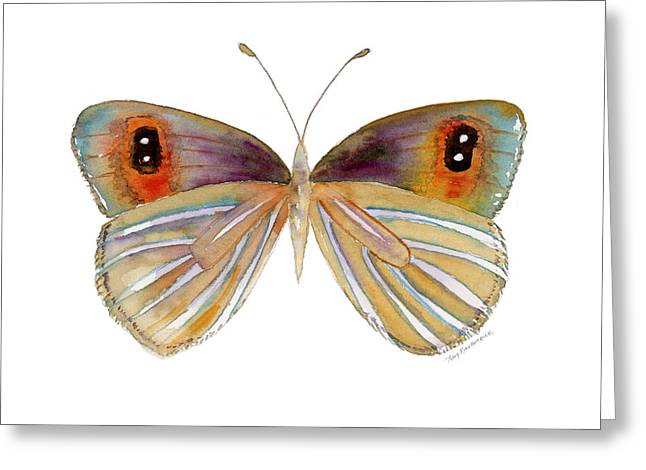 24 Argyrophenga Butterfly Greeting Card by Amy Kirkpatrick