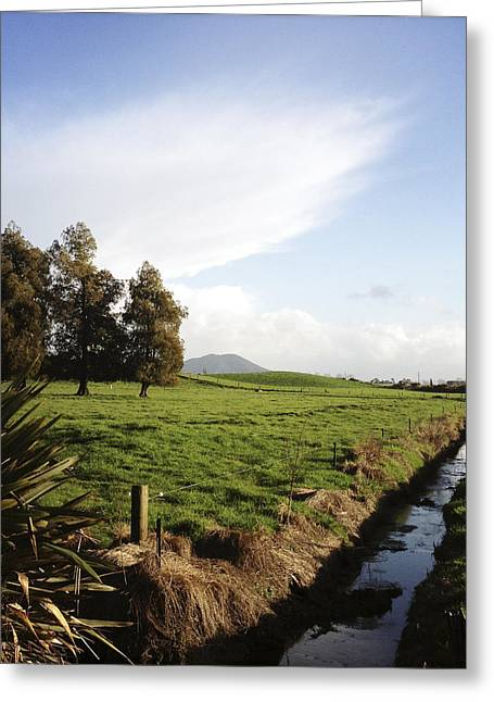Drain Greeting Cards - New Zealand Greeting Card by Les Cunliffe