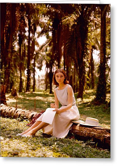 Audrey Hepburn Greeting Card by Silver Screen