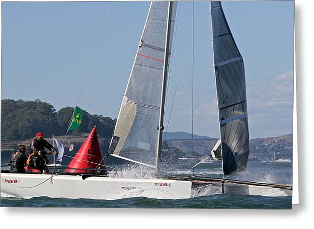 Bay Regatta Greeting Card by Steven Lapkin
