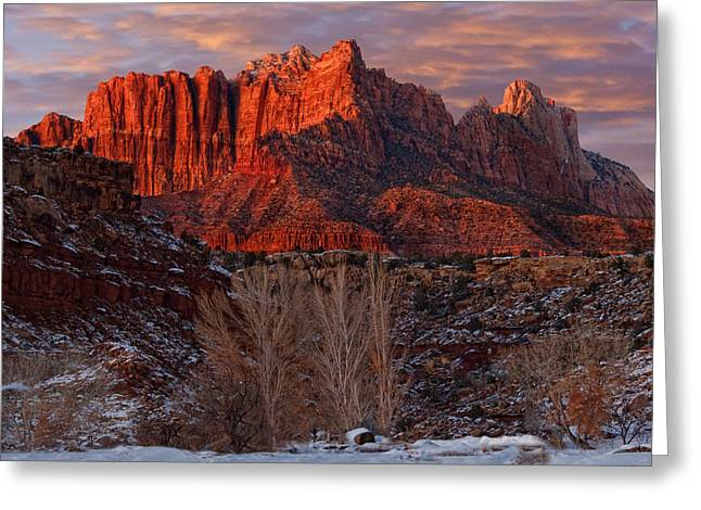Slickrock Greeting Cards - Zion National Park Utah Greeting Card by Utah Images