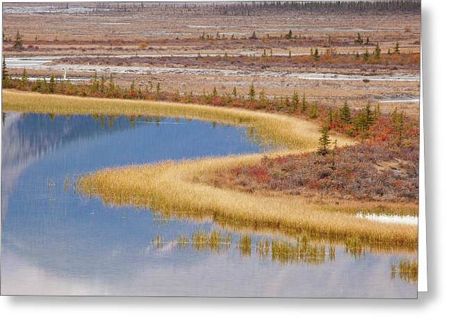 Canada, Alberta, Jasper National Park Greeting Card by Jaynes Gallery