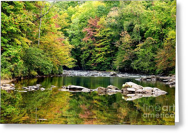 Allegheny Greeting Cards - Fall along Williams River Greeting Card by Thomas R Fletcher