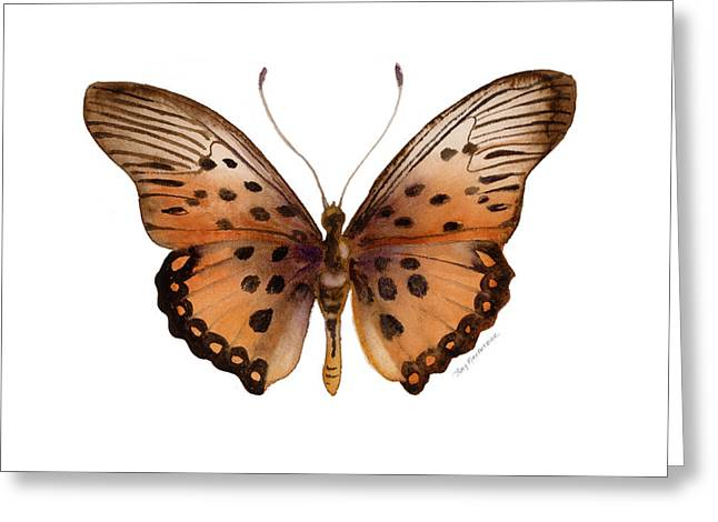 Background Paintings Greeting Cards - 26 Trimans Butterfly Greeting Card by Amy Kirkpatrick