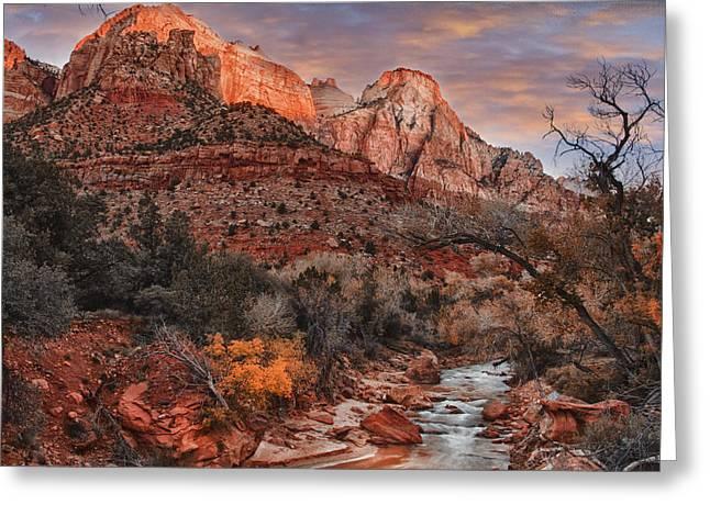 Slickrock Greeting Cards - Zion National Park Utah Greeting Card by Utah Images