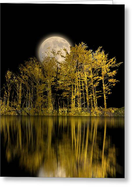 Paper Cut Greeting Cards - 2607 Greeting Card by Peter Holme III