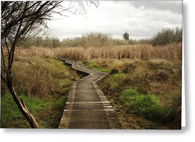 Wetland Greeting Cards - New Zealand Greeting Card by Les Cunliffe