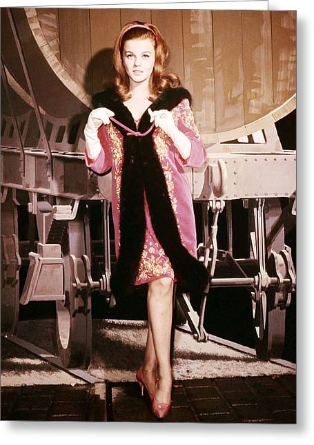 Ann-margret Greeting Card by Silver Screen