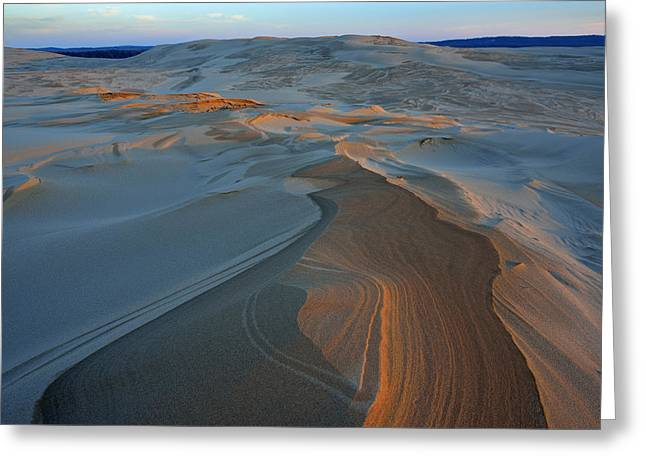 Sand Patterns Greeting Cards - Silver Lake Sand Dunes Greeting Card by Dean Pennala