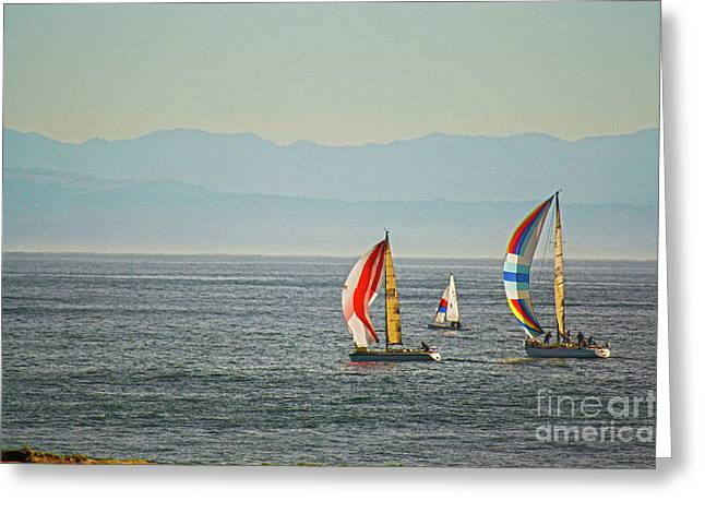 Yellow Sailboats Greeting Cards - 288 - Sailboat IV HDR Greeting Card by Chris Berry
