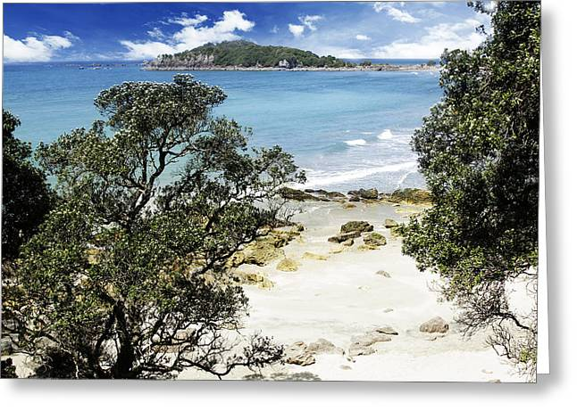 Beach Scenery Greeting Cards - New Zealand Greeting Card by Les Cunliffe
