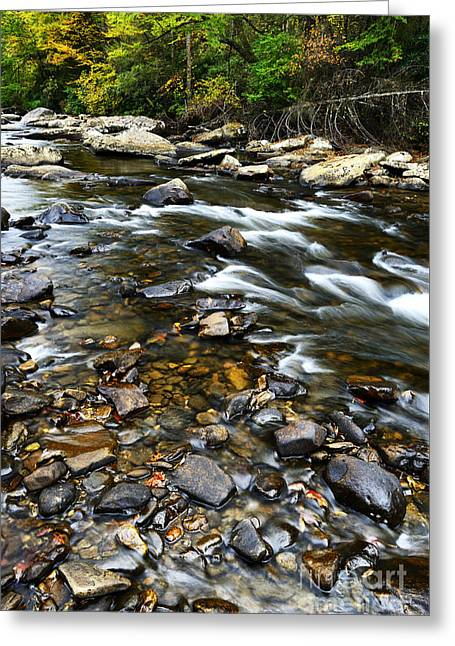 Williams River Greeting Cards - Williams River Autumn Greeting Card by Thomas R Fletcher