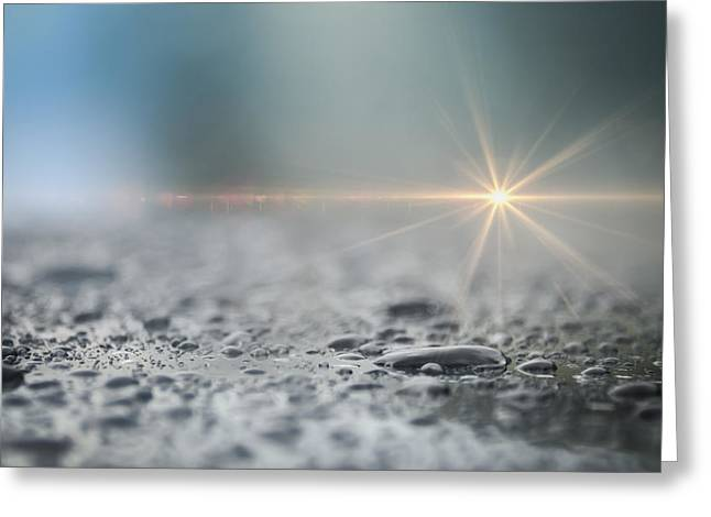 Sunflare Greeting Cards - After The Rain Greeting Card by Carolyn Marshall