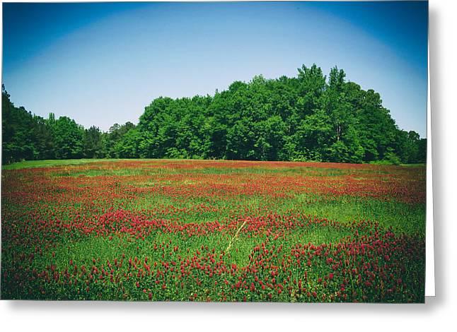 Alabama Greeting Cards - Alabama Meadow Greeting Card by Mountain Dreams