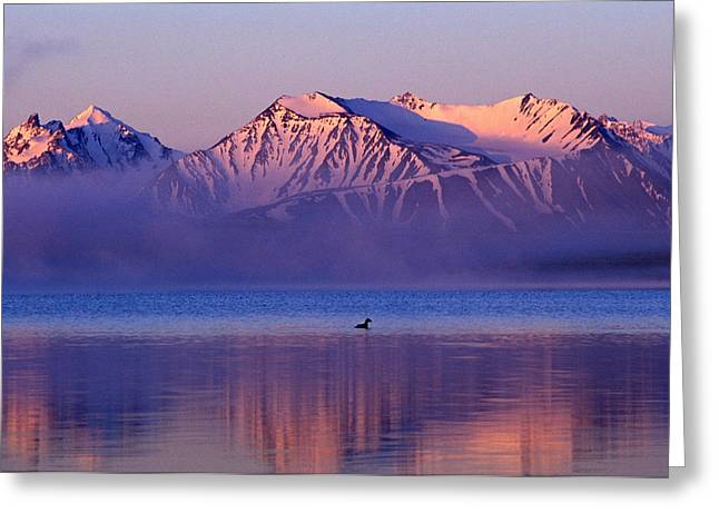 Sunset Reflecting In Water Greeting Cards - Altay Lakes  Kaldzhin Kol Greeting Card by Anonymous