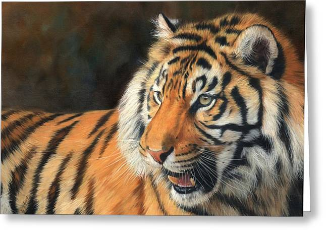 Amur Greeting Cards - Amur Tiger Greeting Card by David Stribbling