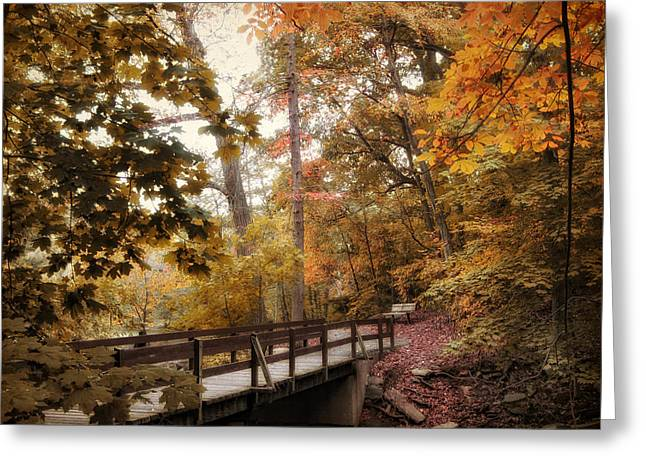 Fall Trees Greeting Cards - Autumn Awaits Greeting Card by Jessica Jenney