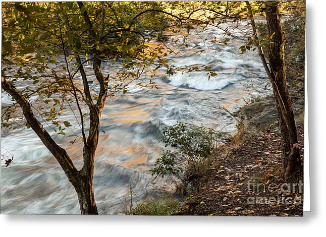 Beavers Bend Park Greeting Cards - Autumn Morning Greeting Card by Iris Greenwell