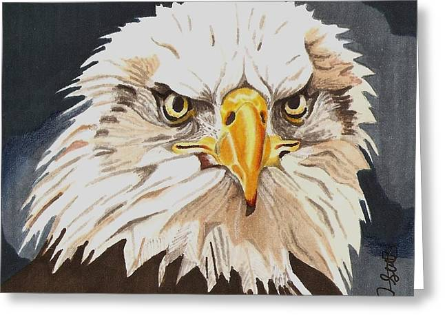 Eagle Drawings Greeting Cards - Bald Eagle Greeting Card by Cory Still
