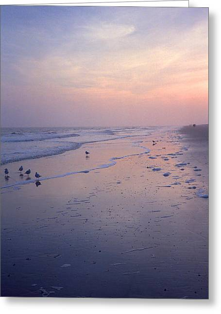 Waterway Birds Greeting Cards - Beach at Dusk Greeting Card by Frank Romeo