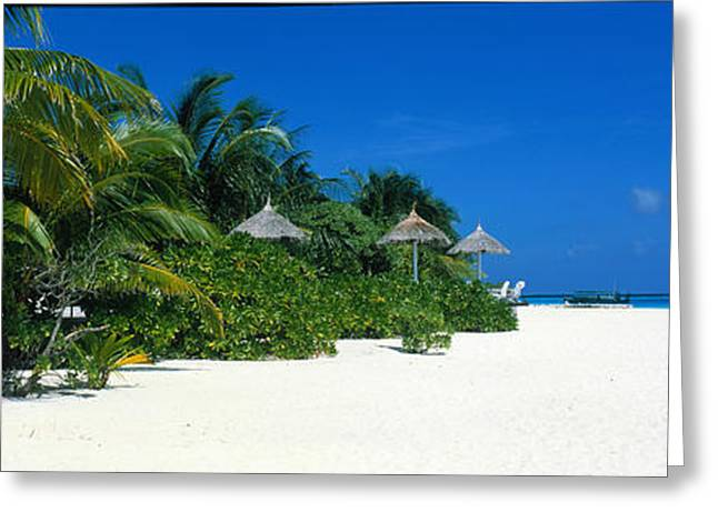 Respite Greeting Cards - Beach Scene The Maldives Greeting Card by Panoramic Images