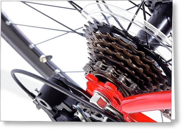 Bicycle Rear Gears Greeting Card by Science Photo Library