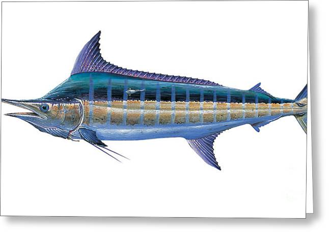 Striped Marlin Paintings Greeting Cards - Blue Marlin Greeting Card by Carey Chen