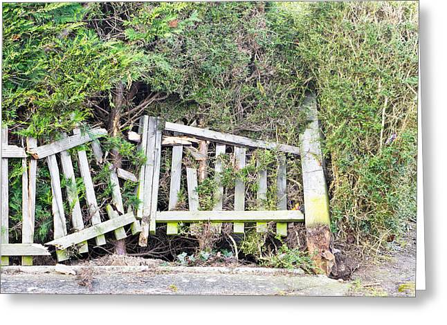 Timber Posts Greeting Cards - Broken fence Greeting Card by Tom Gowanlock