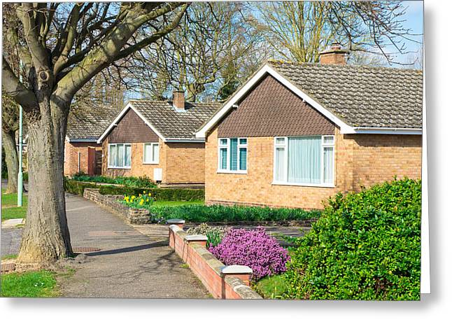 Spring Street Greeting Cards - Bungalows Greeting Card by Tom Gowanlock