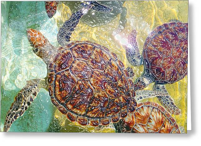 Green Turtle Greeting Cards - Cayman Turtles Greeting Card by Carey Chen