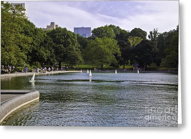 Central Park Pond Greeting Card by Madeline Ellis