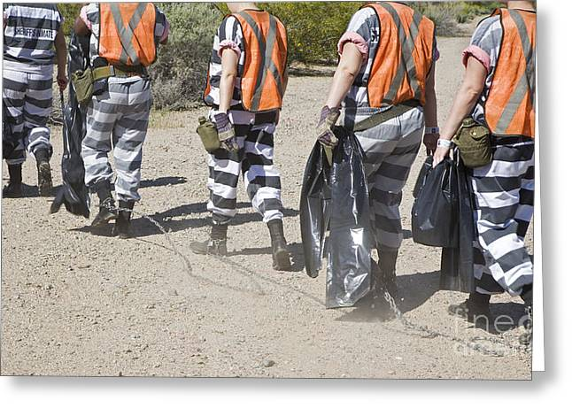 Chain Gang Greeting Cards - Chain Gang Greeting Card by Jim West