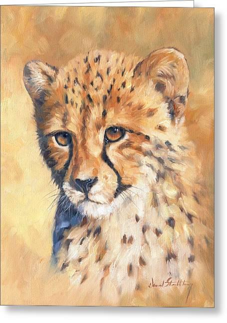 Cheetahs Greeting Cards - Cheetah Cub Greeting Card by David Stribbling
