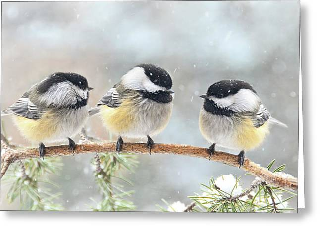 Best Sellers -  - Snowy Day Greeting Cards - 3 Chickadees on a Snowy Day Greeting Card by Peg Runyan
