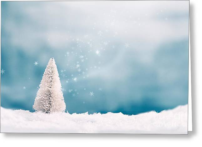 Reds Gold Greens White Blues Greeting Cards - Christmas background Greeting Card by Mythja  Photography