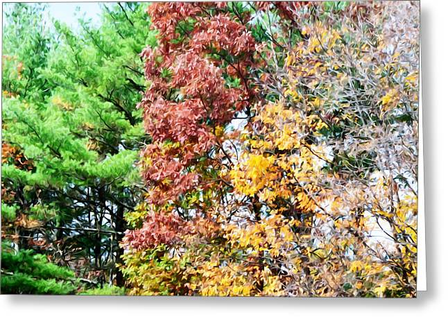 Branch Greeting Cards - 3 Colors Of The Nature Greeting Card by Lanjee Chee