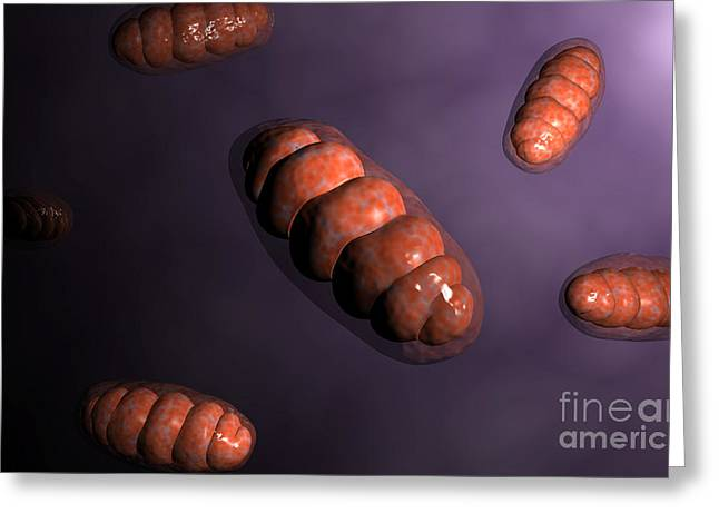 Eukaryotic Cells Greeting Cards - Conceptual Image Of Mitochondria Greeting Card by Stocktrek Images