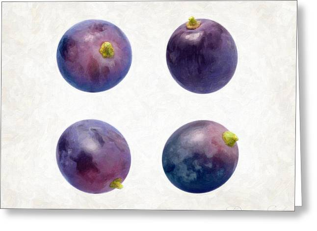 Purple Grapes Greeting Cards - Concord Grapes Greeting Card by Danny Smythe