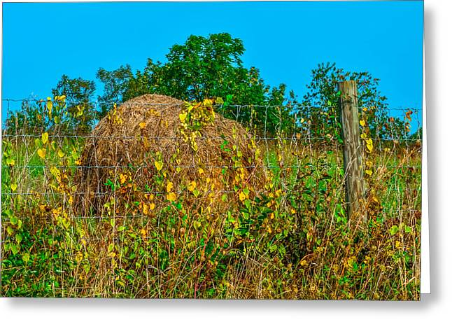 Hayrick Greeting Cards - Country Fence Greeting Card by Brian Stevens