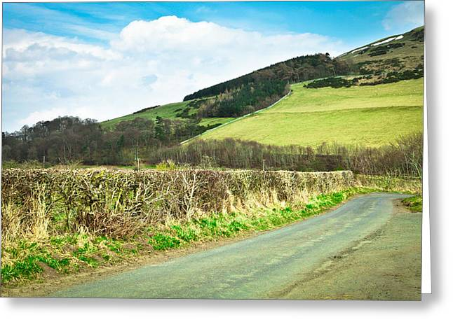 Border Greeting Cards - Country track Greeting Card by Tom Gowanlock