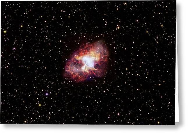 Crab Nebula Greeting Card by Nasa/cxc/sao