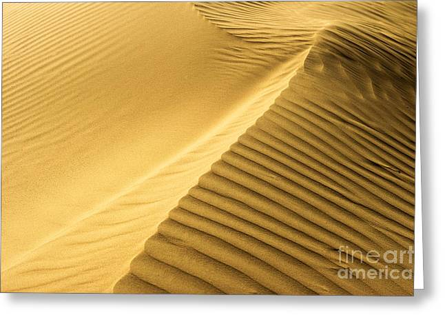Yellow Line Greeting Cards - Desert Sand Dune Greeting Card by Ezra Zahor