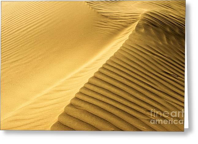 Desert Sand Dune Greeting Card by Ezra Zahor