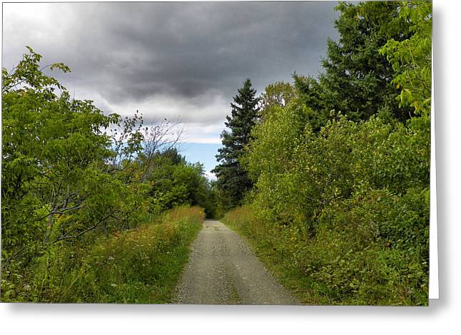 Rural Maine Roads Photographs Greeting Cards - Dirt Road Greeting Card by Gene Cyr
